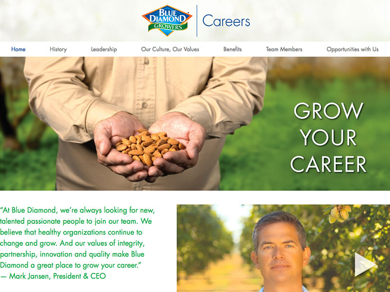 Blue Diamond Careers website