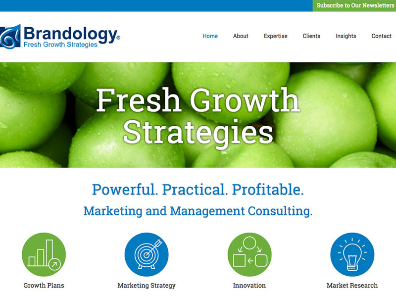 Brandology homepage