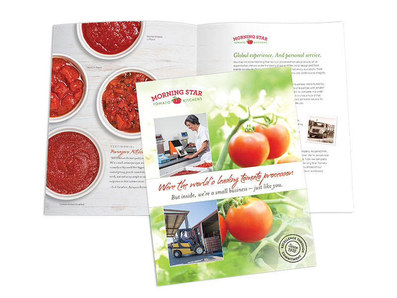Morning Star Tomato Kitchens brochure