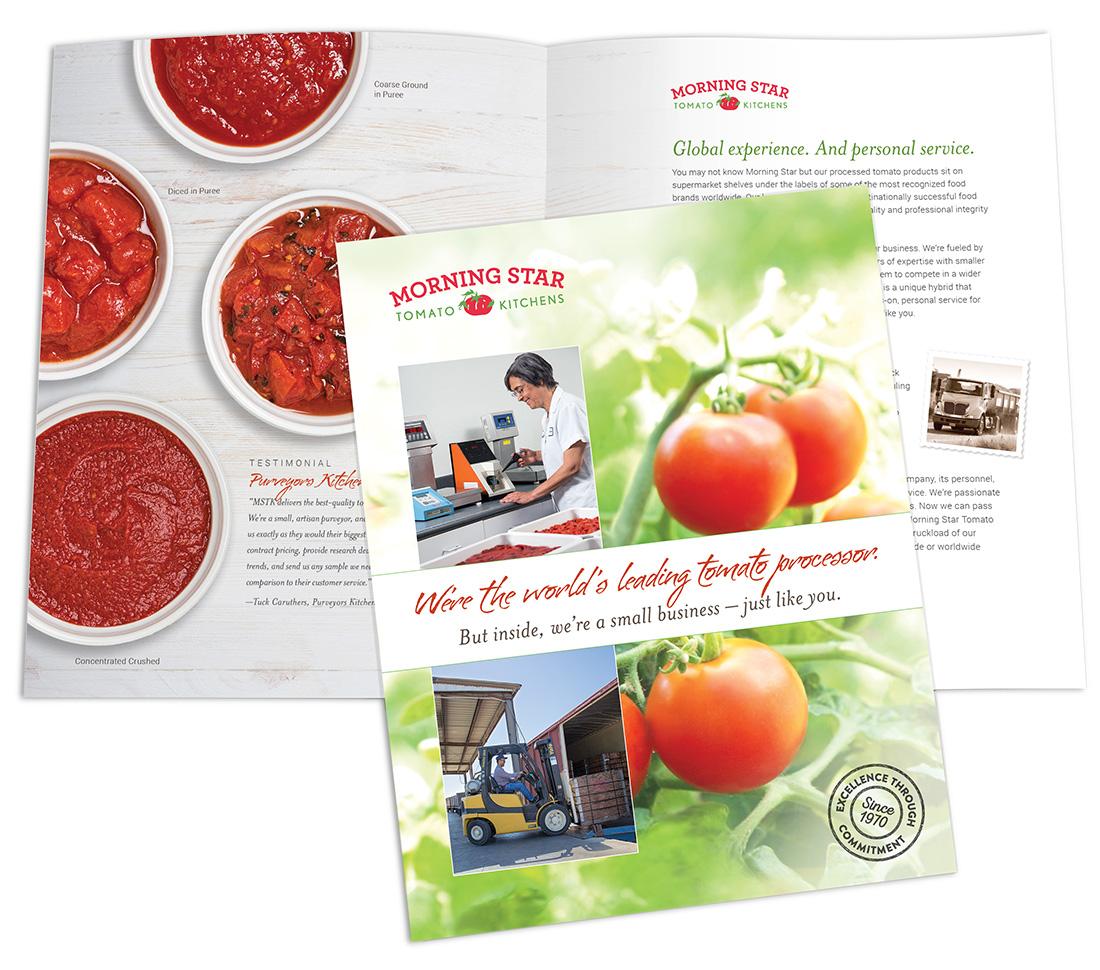 MSTK brochure